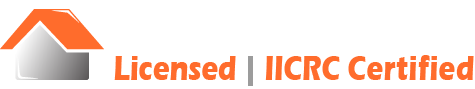 Bella Mold Removal Chicago