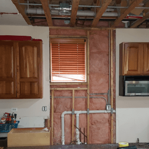 Bella Mold Removal Chicago Services